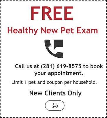 Free Healthy New Pet Exam